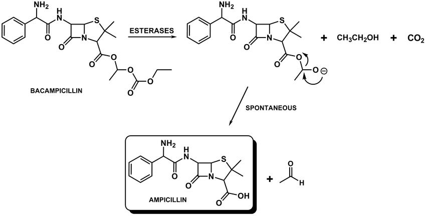 Công thức hóa học của Bacampicillin